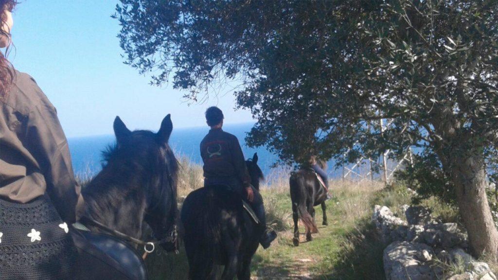 Passeggiate in Sella